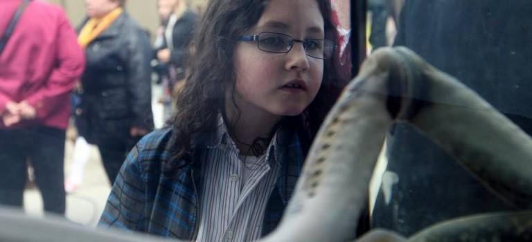 Fiesta de la lamprea de Pontecesures