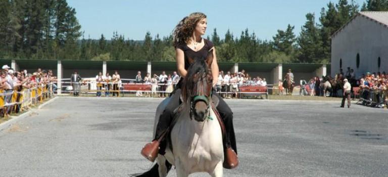 Feria del Caballo de Friol