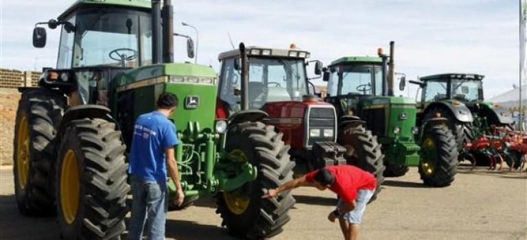 Feria Agroalimentaria do Pinto