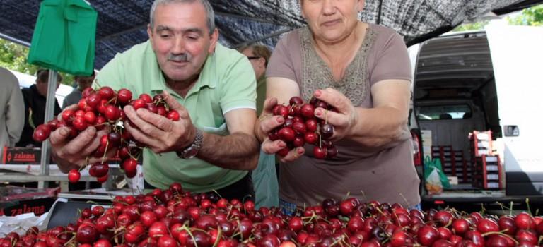 Feria de las Cerezas de Paiosaco de Laracha